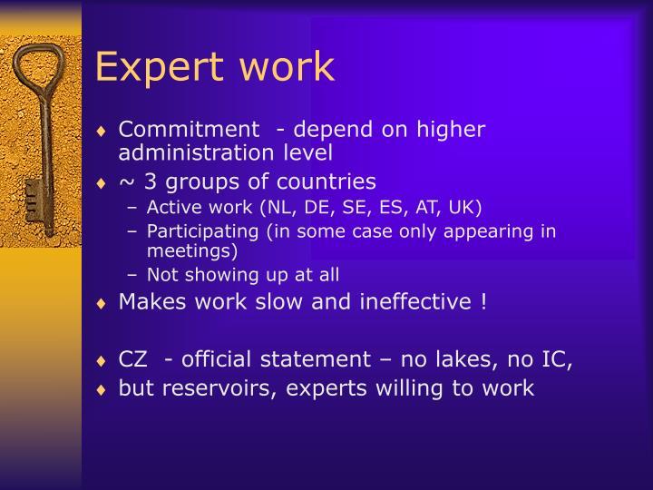 Expert work