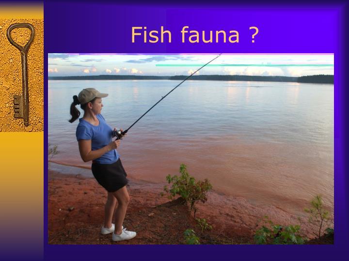 Fish fauna ?