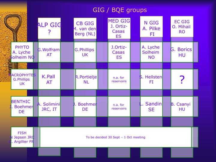 GIG / BQE groups