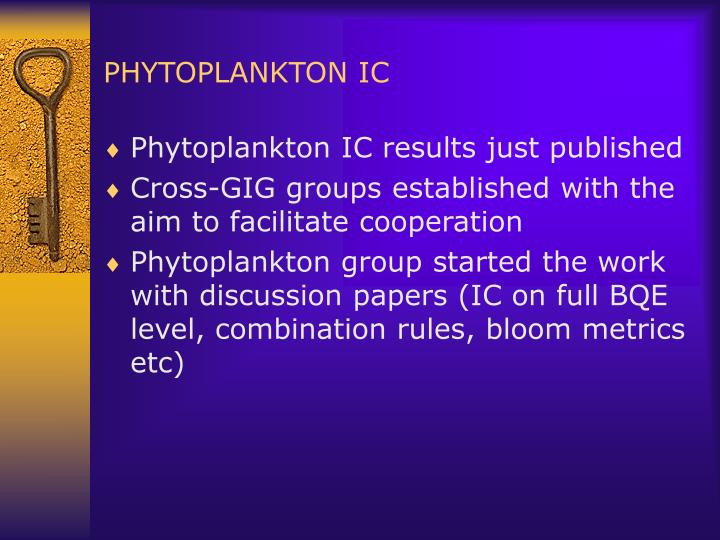 PHYTOPLANKTON IC