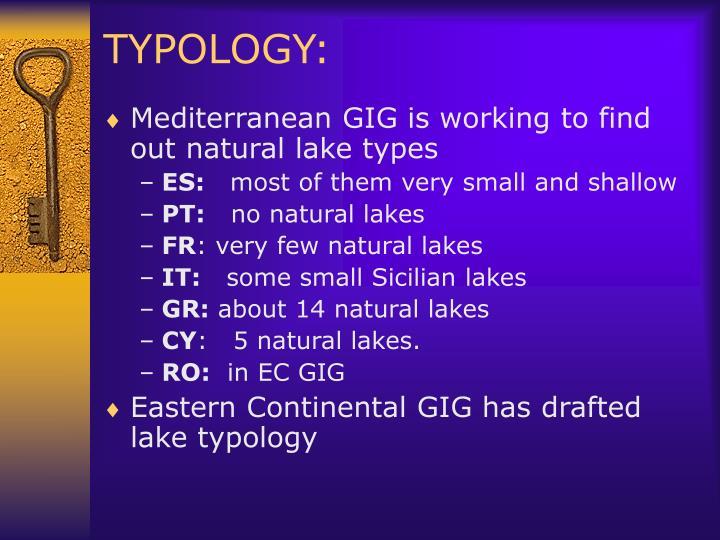 TYPOLOGY: