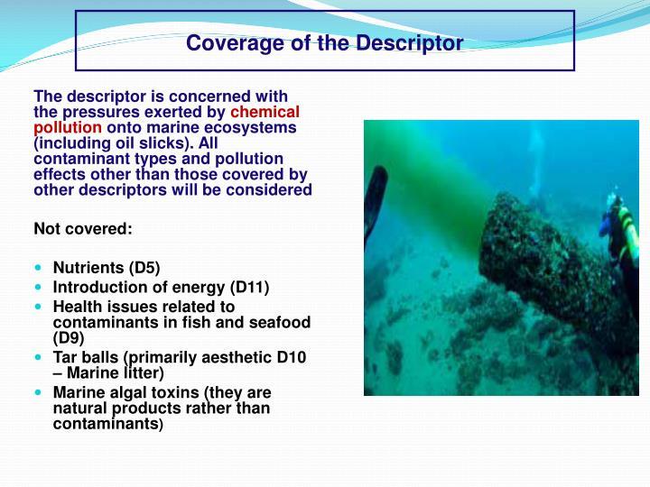 Coverage of the Descriptor