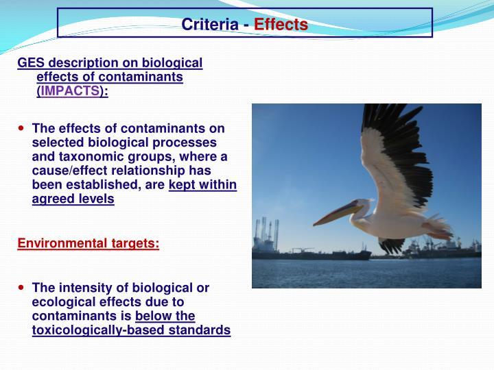 Criteria -