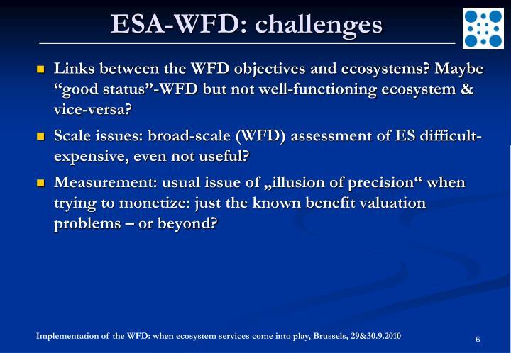 ESA-WFD: challenges