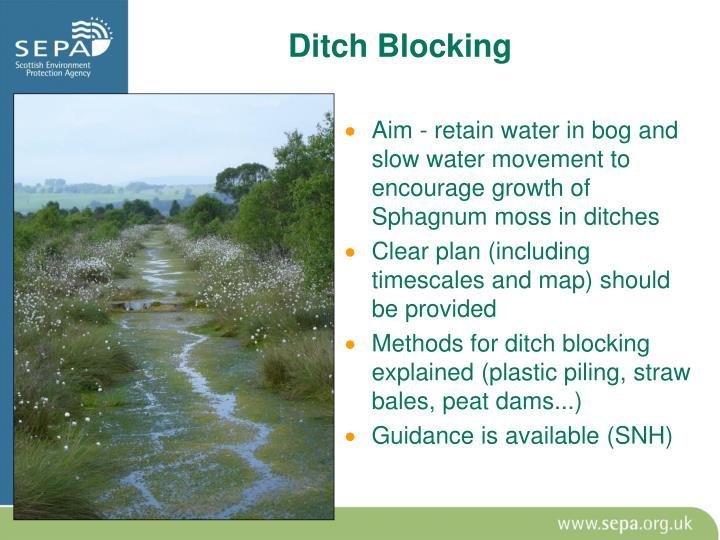 Ditch Blocking
