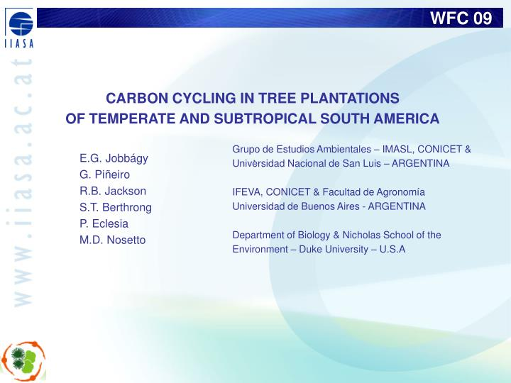 CARBON CYCLING IN TREE PLANTATIONS