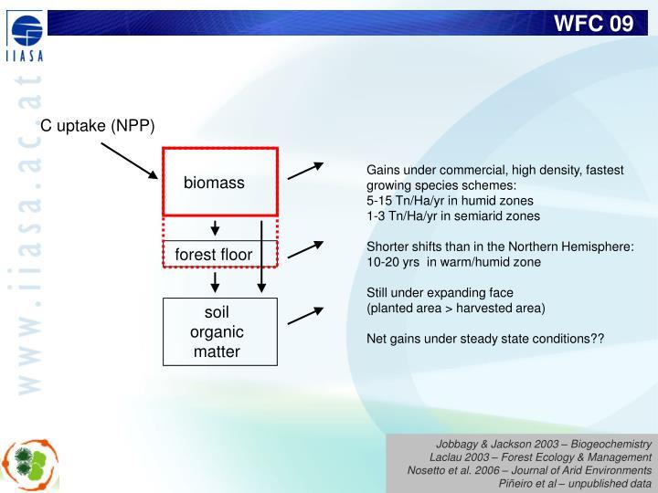 C uptake (NPP)