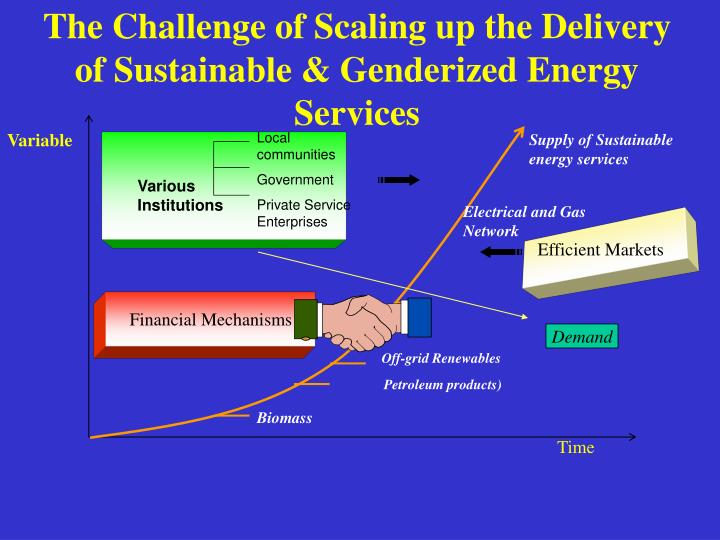 The Challenge of Scaling up the Delivery of Sustainable & Genderized Energy Services