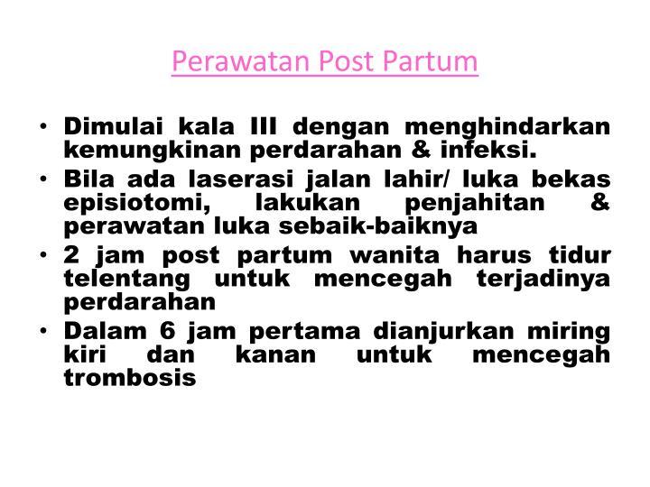 Perawatan Post Partum