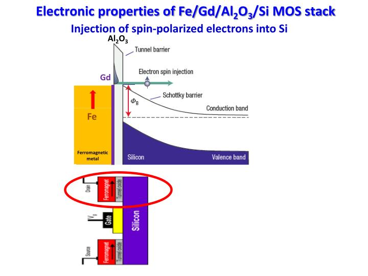 Electronic properties of Fe/