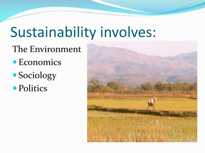 Sustainability involves: