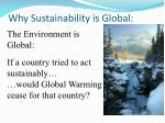 why sustainability is global