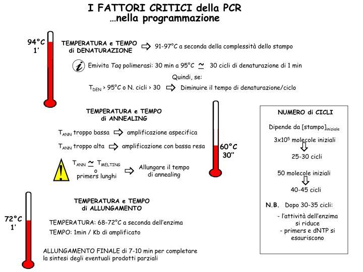 I FATTORI CRITICI della PCR