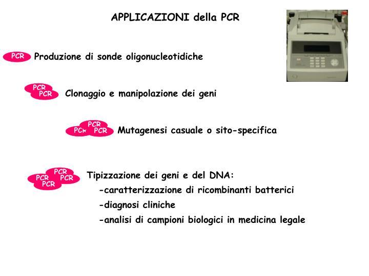 Produzione di sonde oligonucleotidiche