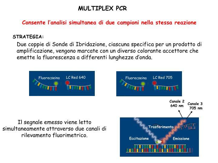 Consente l'analisi simultanea di due campioni nella stessa reazione