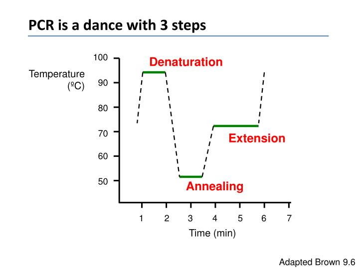 PCR is a dance with 3 steps