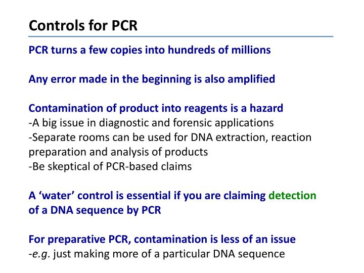 Controls for PCR