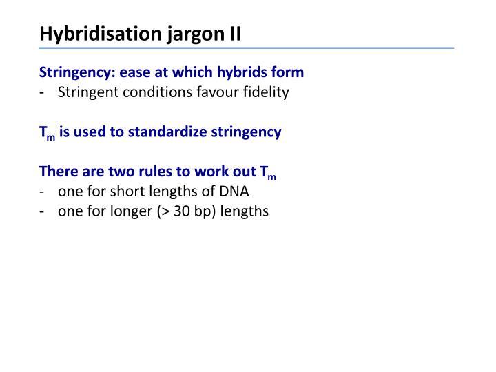 Hybridisation jargon II