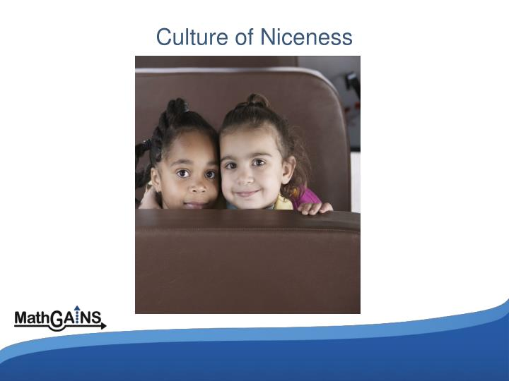 Culture of Niceness