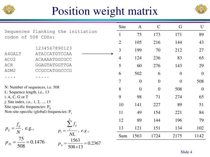Position weight matrix
