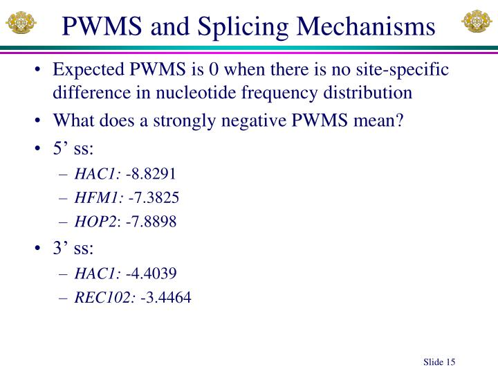 PWMS and Splicing Mechanisms