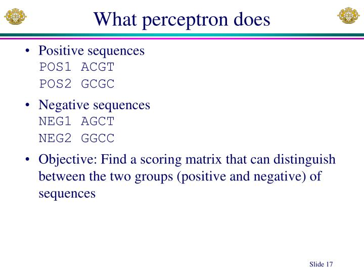 What perceptron does