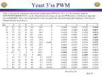 yeast 3 ss pwm