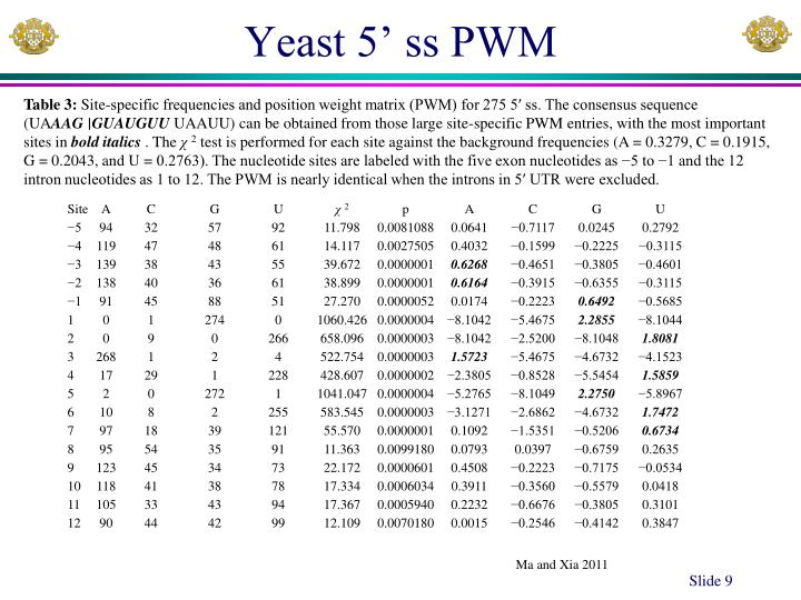 Yeast 5' ss PWM