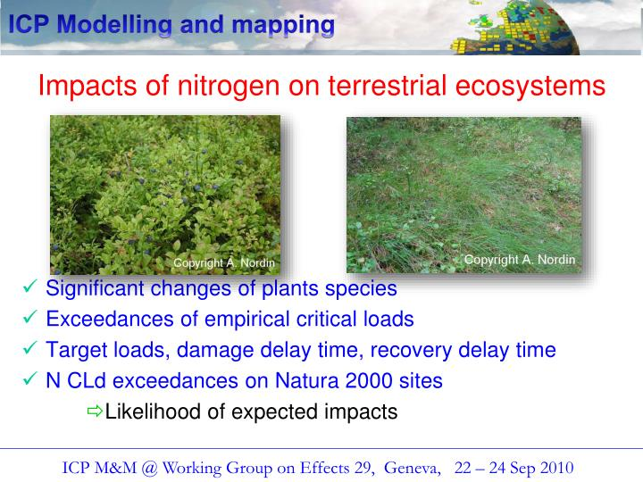 Impacts of nitrogen on terrestrial ecosystems