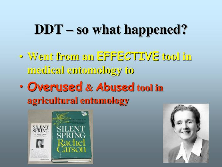 DDT – so what happened?
