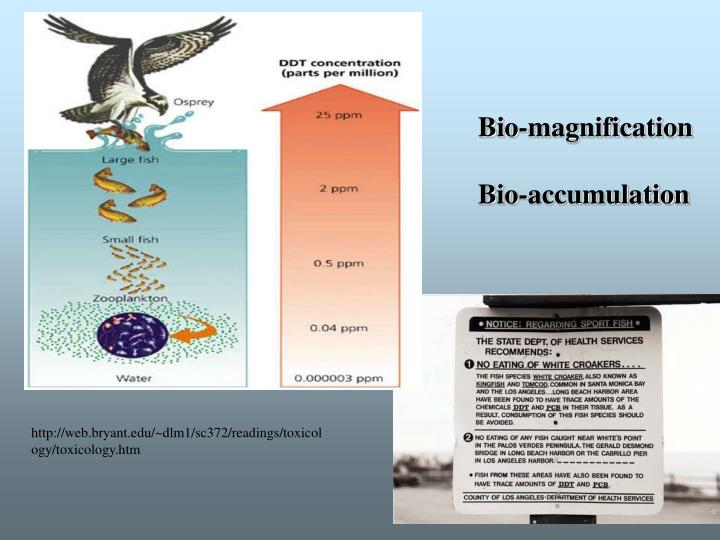 Bio-magnification