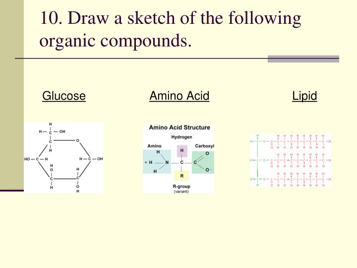10. Draw a sketch of the following organic compounds.