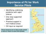 importance of fit for work service pilots