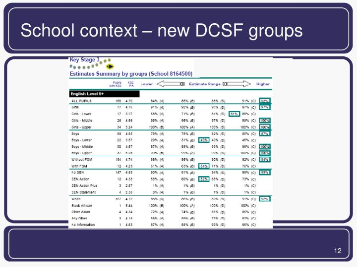 School context – new DCSF groups