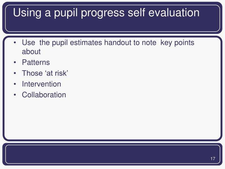 Using a pupil progress self evaluation