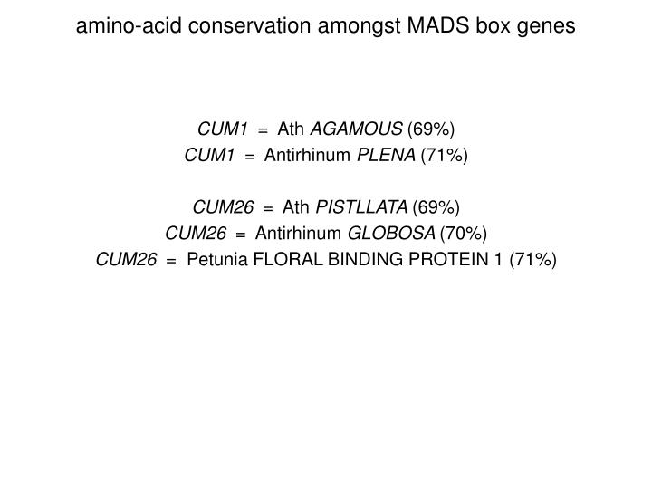 amino-acid conservation amongst MADS box genes