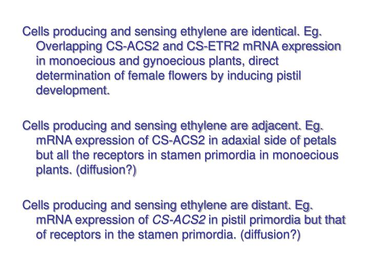 Cells producing and sensing ethylene are identical. Eg. Overlapping CS-ACS2 and CS-ETR2 mRNA expression in monoecious and gynoecious plants, direct determination of female flowers by inducing pistil development.