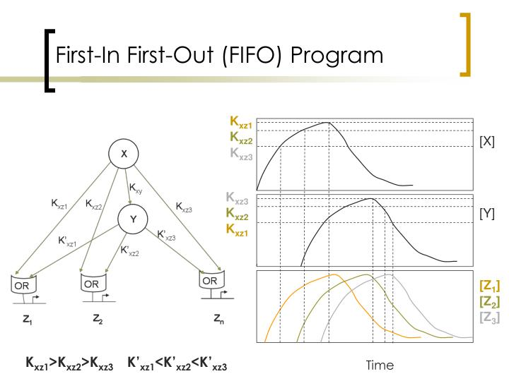 First-In First-Out (FIFO) Program