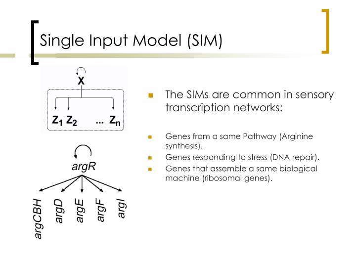 Single Input Model (SIM)