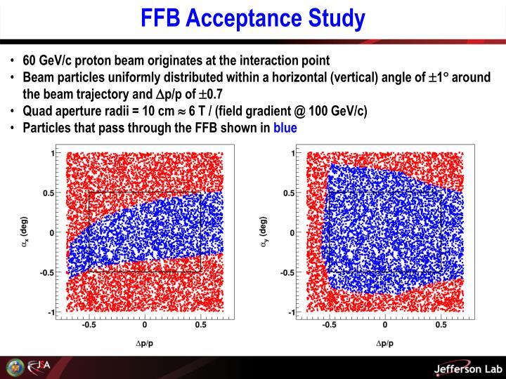 FFB Acceptance Study