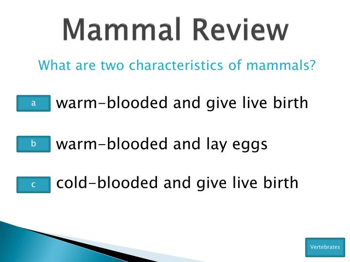 Mammal Review