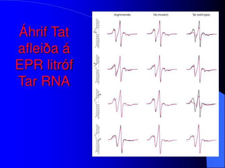 Áhrif Tat afleiða á EPR litróf Tar RNA