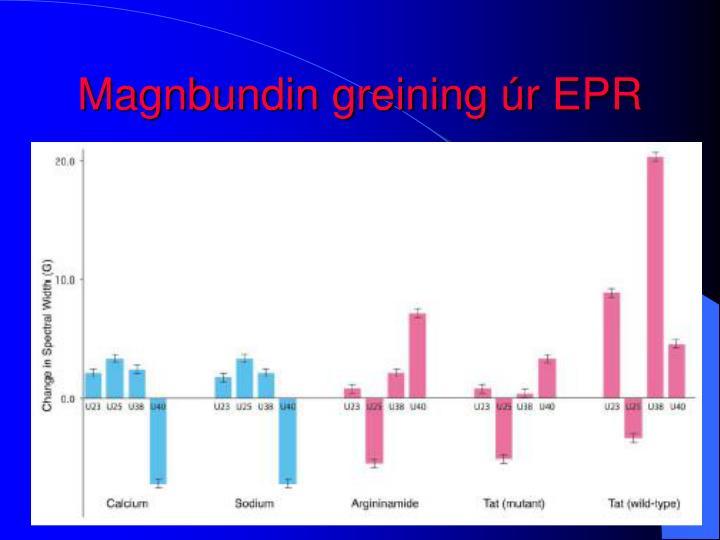 Magnbundin greining úr EPR