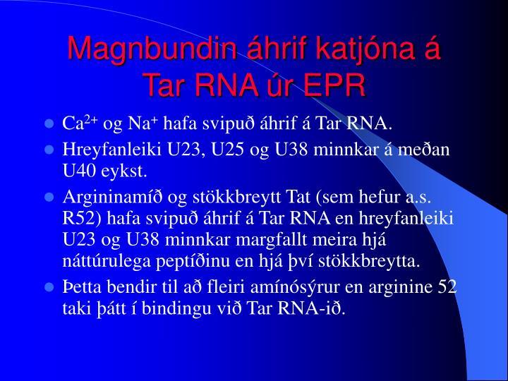 Magnbundin áhrif katjóna á Tar RNA úr EPR