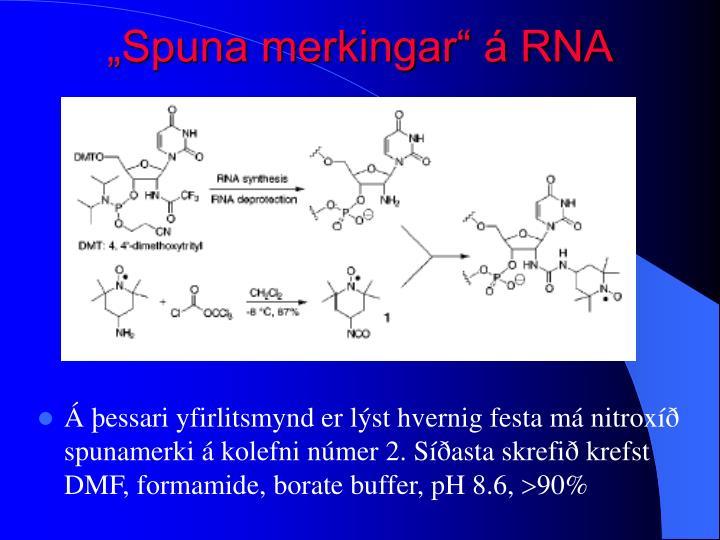 """""""Spuna merkingar"""" á RNA"""
