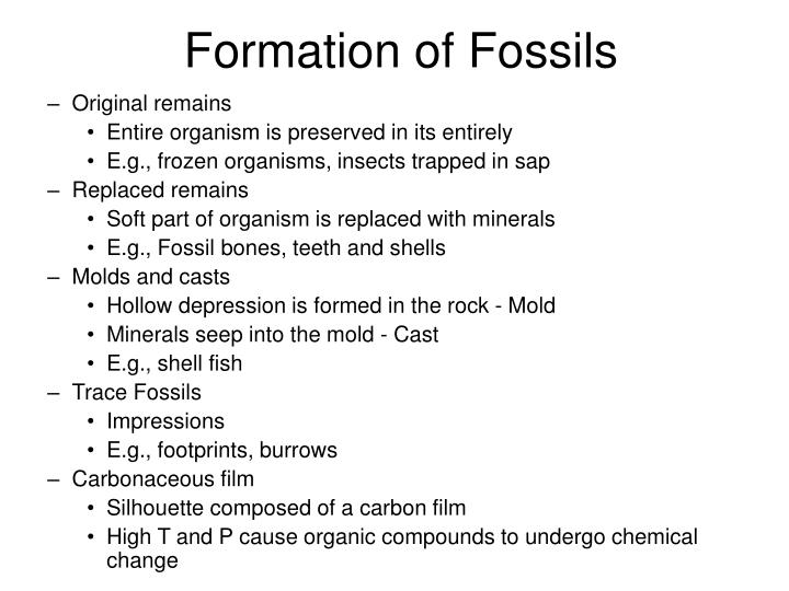 Formation of Fossils