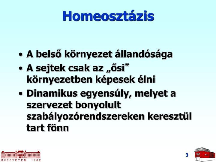 Homeosztázis