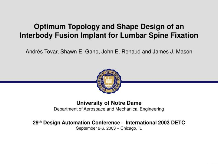 Optimum Topology and Shape Design of an Interbody Fusion Implant for Lumbar Spine Fixation