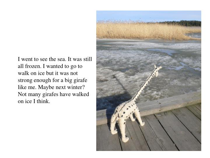 I went to see the sea. It was still all frozen. I wanted to go to walk on ice but it was not strong enough for a big girafe like me. Maybe next winter? Not many girafes have walked on ice I think.