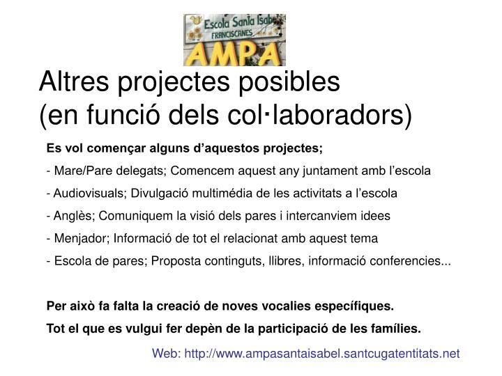 Altres projectes posibles